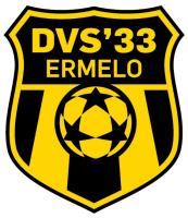 dvs33-ermelo-vr